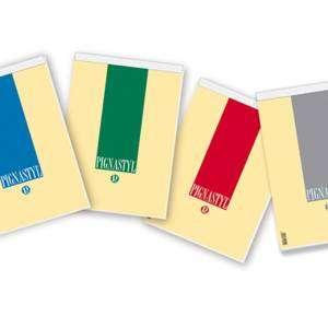 Blocco Note 21x29,7cm Quad. 5mm Pignastyl