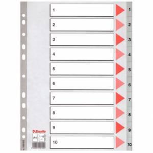 DIVISORI NUMERICI 1/10 21x29,7cm PLASTICA ESSELTE