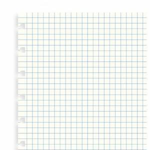 Notebook Filofax 15x21cm  Refill 32fg 5mm
