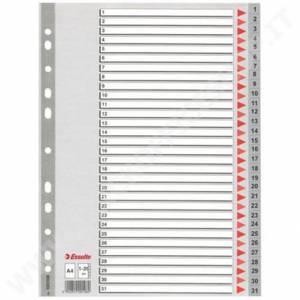 DIVISORI NUMERICI 1/31 21x29,7cm PLASTICA ESSELTE
